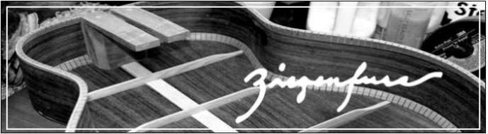 Ziegenfuss Guitars