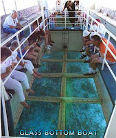 glass bottom boat, turtle island