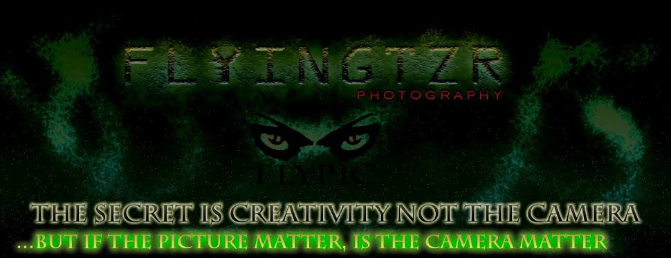 flyingtzr photography