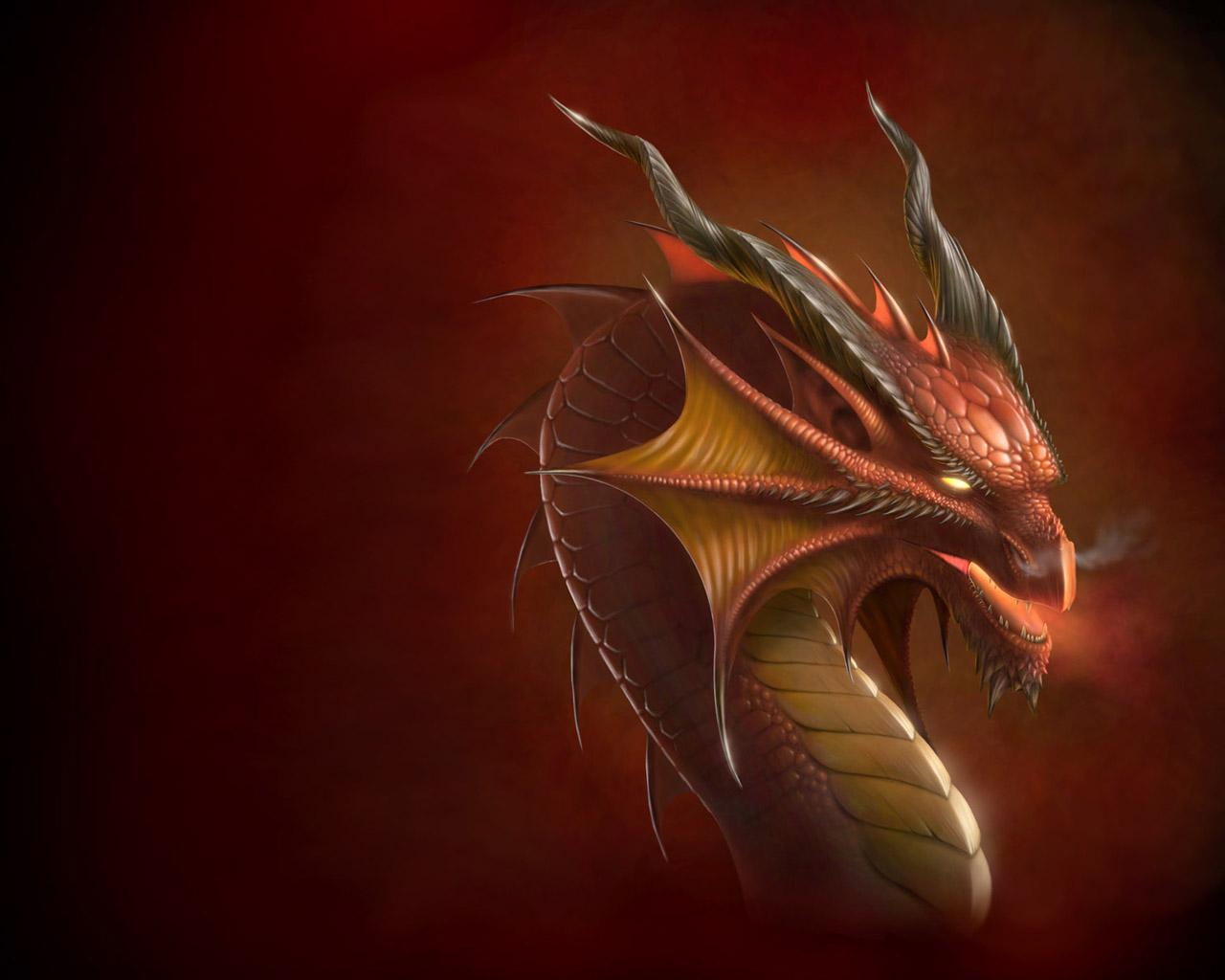 http://3.bp.blogspot.com/_69ovQpZVdFw/TUwjerLmzFI/AAAAAAAAB8I/0kQKD-VHUQk/s1600/Dragon_head_Wallpaper.jpg