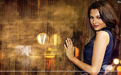 Bollywood - Mrinalini Sharma Wallpaper