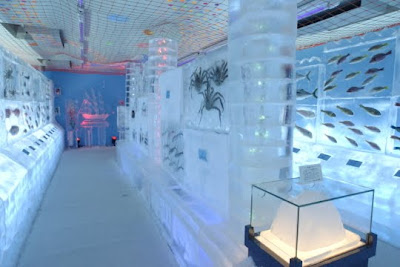 Frozen Ice Aquariam in Japan