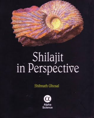 Shilajit Photo medicine