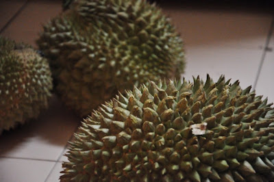 The King of Fruits Durian