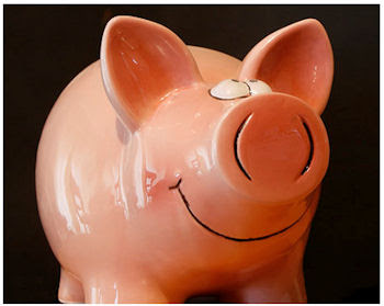 The presurfer the evolution of piggy banks - Piggy bank without stopper ...