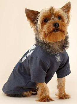 camiseta para perros