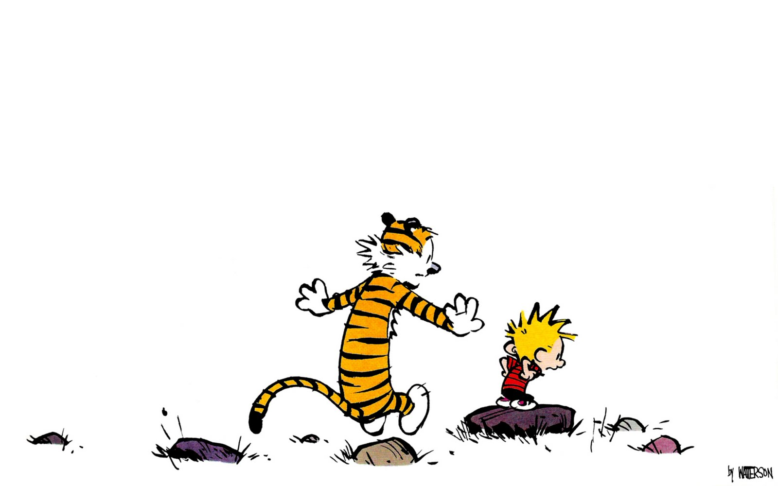 ... plus computer related articles: Calvin and Hobbes Collection