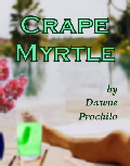 Crape Myrtle - Dawne Prochilo
