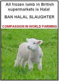 ....BAN HALAL SLAUGHTER.....
