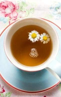 Chamomile