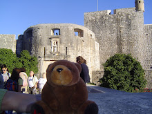 Teddy bear in Dubrovnik