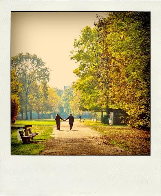 Evry Daily Photo - Les Amoureux du Parc des Coquibus Evry - Automne