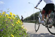 Sicilia in bicicletta - Una vacanza da godere con tutti i sensi