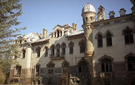 Одно их бывших зданий нашего Института (бывший Елисеевский дворец)