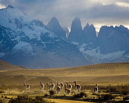 Sabes que sos patagónico si...