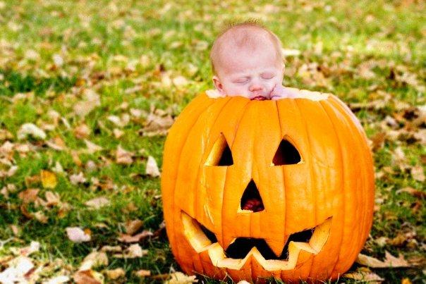 [sage+pumpkin+1]