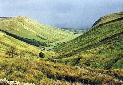Irish Valley