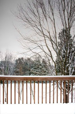 first snowfall in east Tennessee)