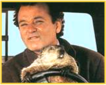 """At least one of them critters is bound to see things your way.""  Groundhog Day, February 2, 2011"