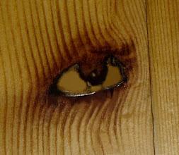 El ojo de Dokoupil