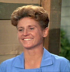The-Brady-Bunch-Alice-the-brady-bunch-5541124-281-288.jpg