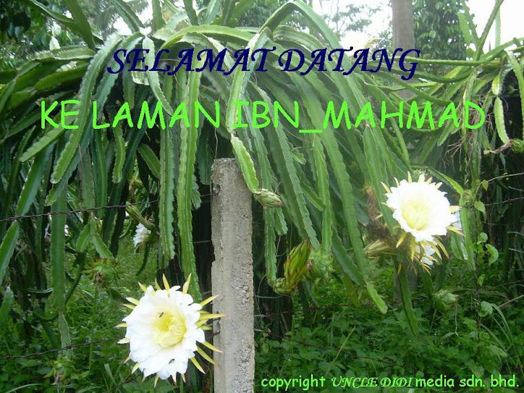 ibn_mahmad
