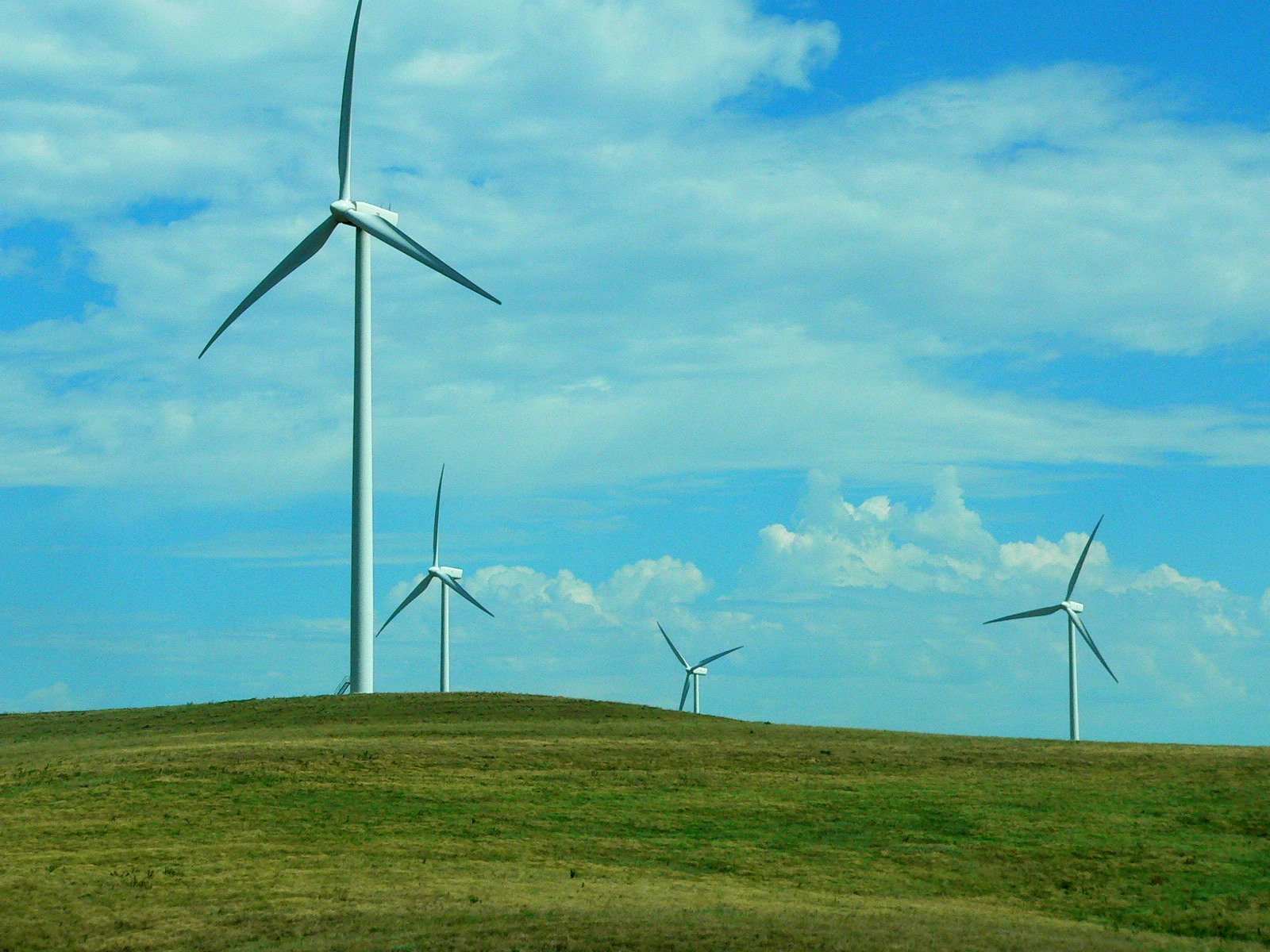 wind farm Learn more about wind power our plans include 12 new wind farms in seven states that will add nearly 3,700 megawatts of new wind capacity to our system.