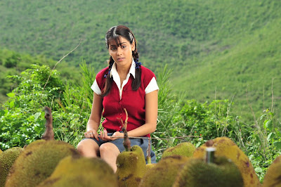 genelia in katha photos