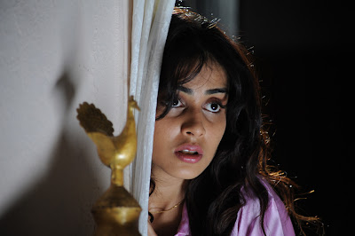 genelia photos in katha