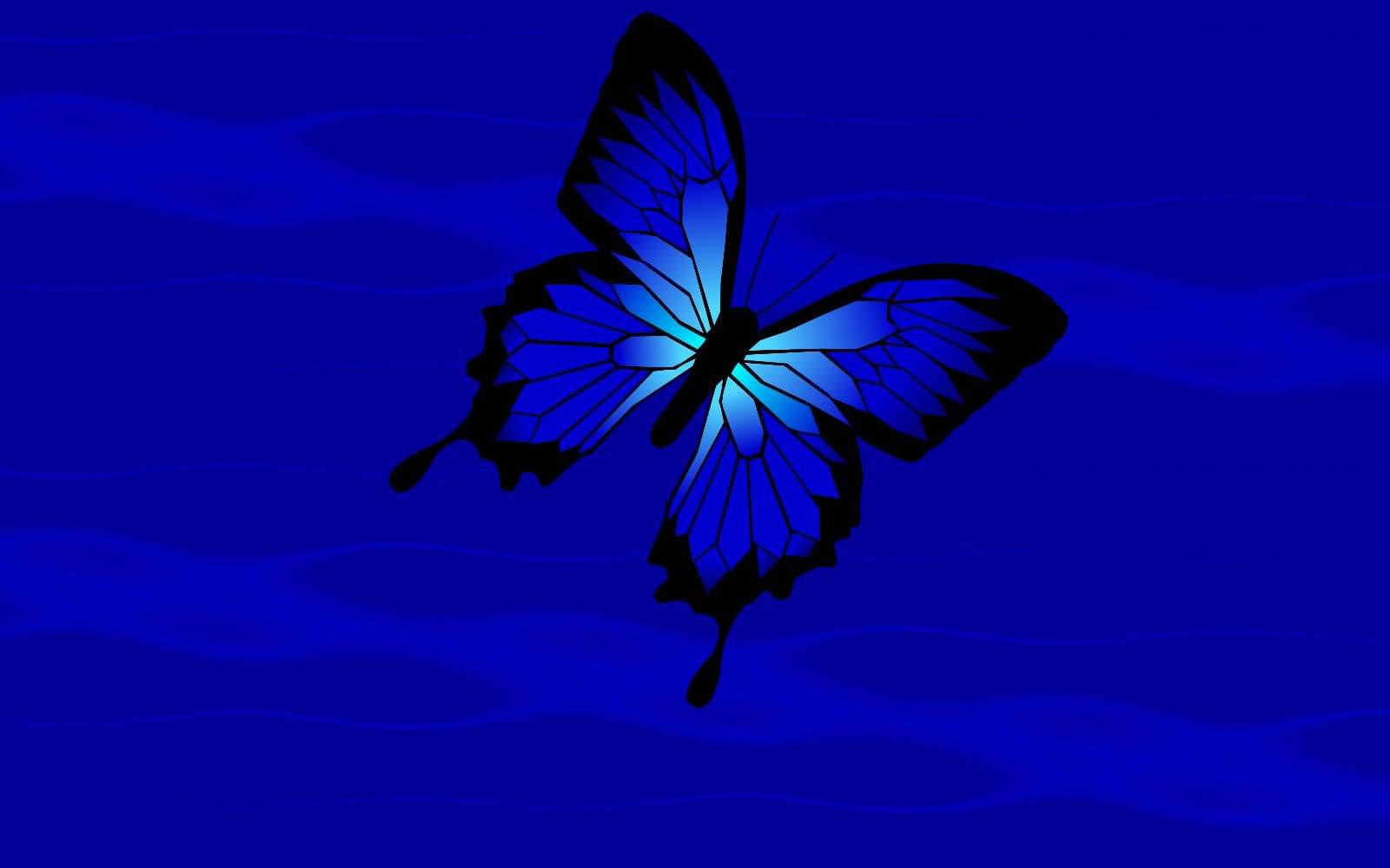 http://3.bp.blogspot.com/_6Ww5NekKT-Y/TNDvDW83KpI/AAAAAAAAA9Q/nAjIcqwDHWM/s1600/BlueButterflyBackground.jpg