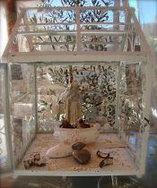 MPMaison Terrarium