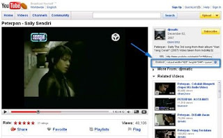 SEO 2009 lewat video