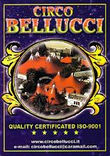 CIRCO BELLUCCI