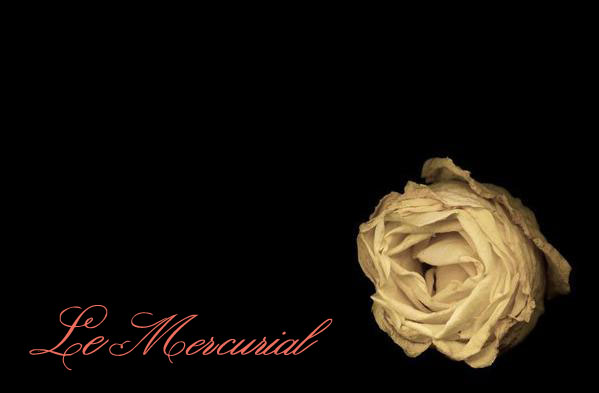 Le Mercurial - The Online Store