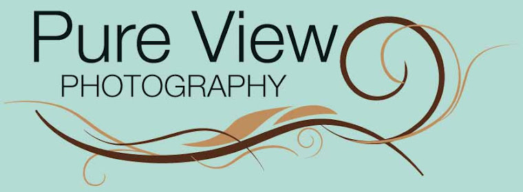 Pure View Photography