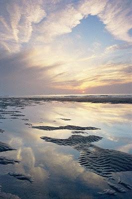 Sun and Seashore
