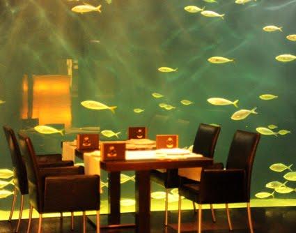 Nos ponemos como el kiko restaurante submarino l for Oceanografic telefono
