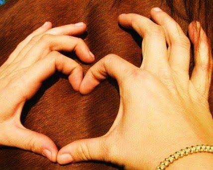 """""""Pony Love"""""""
