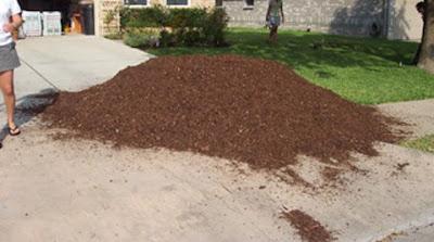 DivasoftheDirt, mulch pile