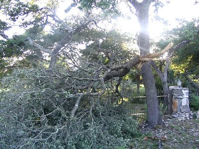 DivasoftheDirt, Windstorm 1
