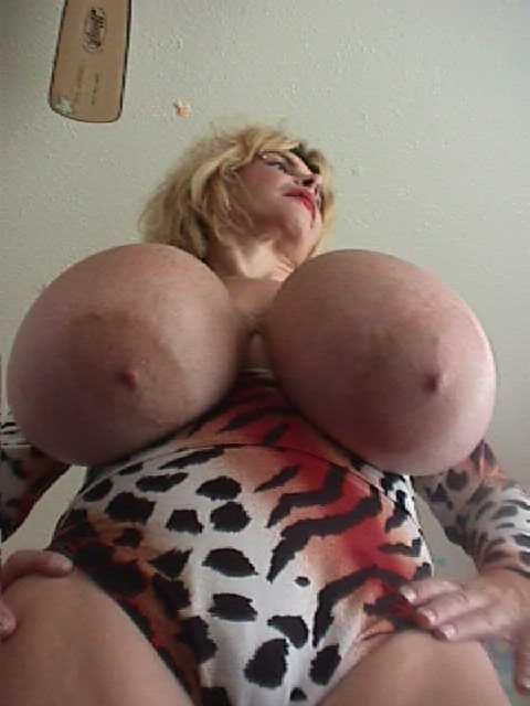 sexy pregnant women erika