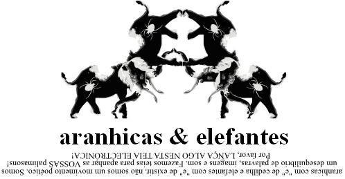 aranhicas & elefantes