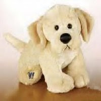 yellow lab retired webkinz