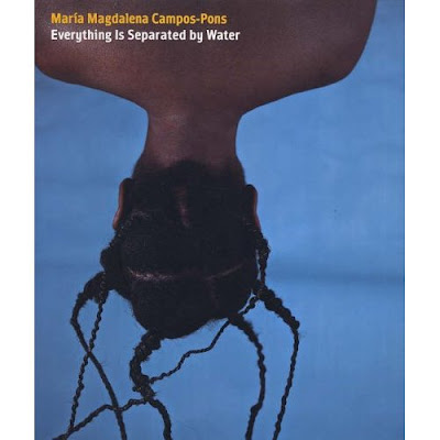 Campos-Pons book cover