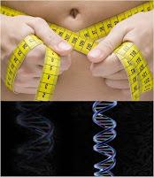 ADN midiendo cintura