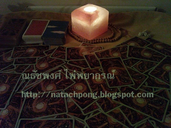 Tarot Root of Asia