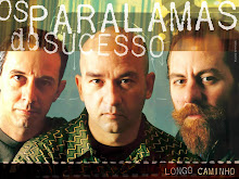 Os paralamas do sucesso