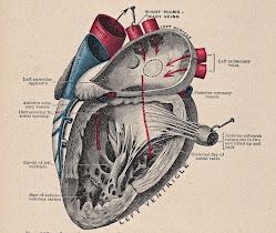 e coração