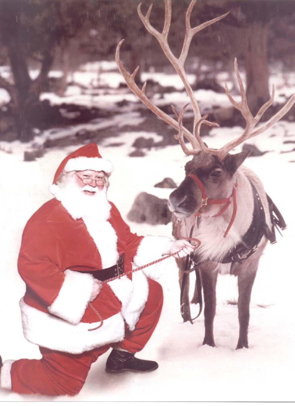 Pin santa s reindeer on pinterest