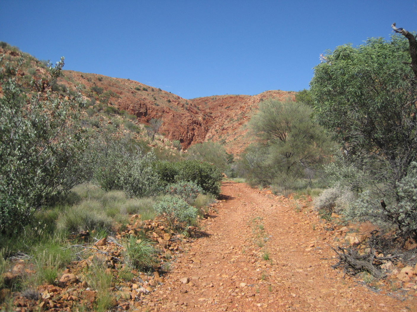 Outback Wanderers: Day 10: Northern Territory and Kata